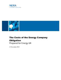 The Costs of the Energy Company Obligation