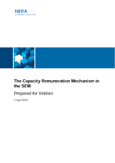 The Capacity Remuneration Mechanism in the SEM