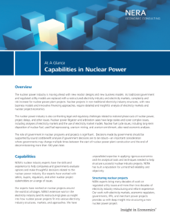 Capabilities in Nuclear Power At A Glance