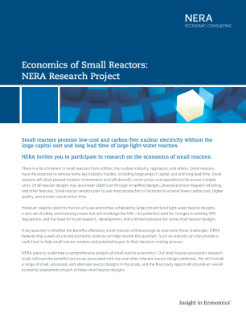Economics of Small Reactors: NERA Research Project