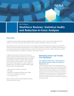 Workforce Reviews: Statistical Audits and Reduction-in-Force Analyses At A Glance