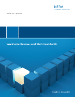 Workforce Reviews and Statistical Audits