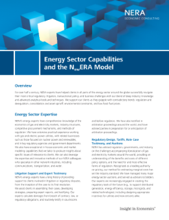 Energy Sector Capabilities and the NewERA Model