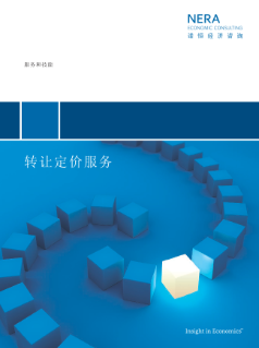 Transfer Pricing Services (Chinese translation)