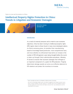 Intellectual Property Rights Protection in China: Trends in Litigation and Economic Damages