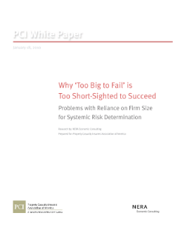 Why 'Too Big to Fail' is Too Short-Sighted to Succeed: Problems with Reliance on Firm Size for Systemic Risk Determination