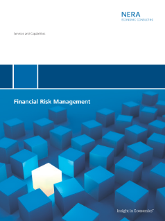 Services and Capabilities in Financial Risk Management