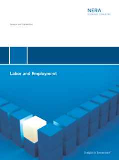 Labor and Employment Services and Capabilities