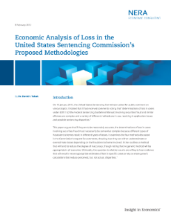 Economic Analysis of Loss in the United States Sentencing Commission's Proposed Methodologies