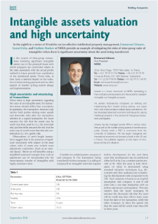 Intangible Assets Valuation and High Uncertainty