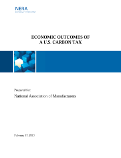 Economic Outcomes of a US Carbon Tax