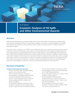 Economic Analyses of Oil Spills and Other Environmental Hazards At A Glance