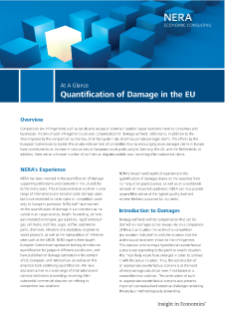 Quantification of Damage in the EU At A Glance
