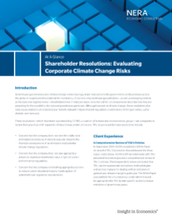 Shareholder Resolutions: Evaluating Corporate Climate Change Risks At A Glance
