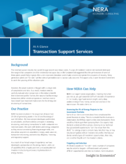 Transaction Support Services At A Glance