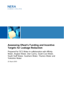 NERA Economists Assess Ofwat's Funding and Incentive Targets for Leakage Reduction